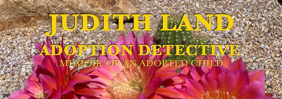 JUDITH LAND ADOPTION DETECTIVE